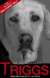 Cover of Triggs:  The Autobiography of Roy Keane's Dog